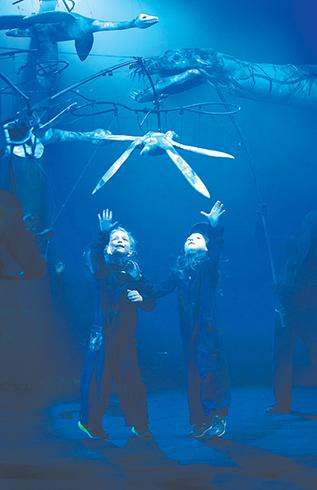 AAA Aquarium pic copy